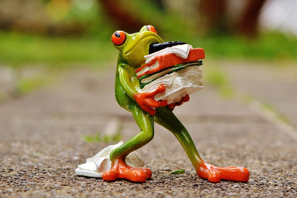 Frog carrying work